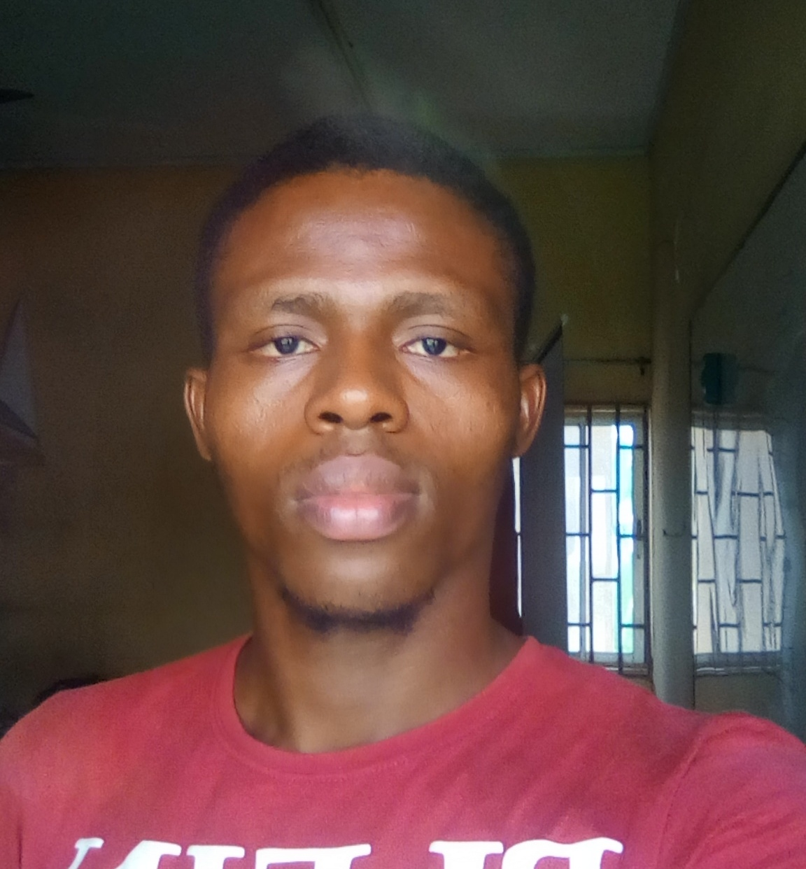 henry Ikeh the we developer - the spark youth empowerment platform in nigeria